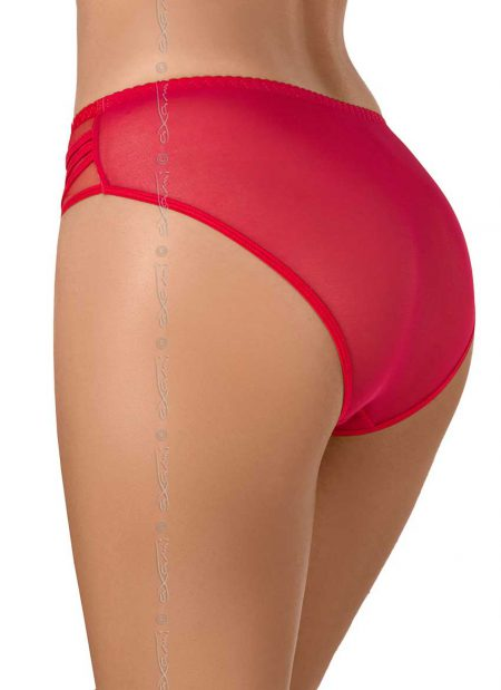 AXAMI-V-8043-luxury-red-panties-back-knickers