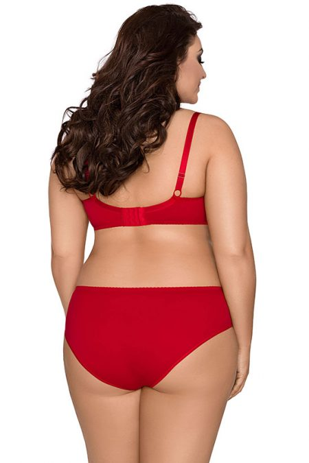 axami-V-8431-plus-size-bra-red-bra-and-V-8433-red-panties-back