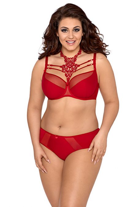axami-V-8431-plus-size-bra-red-plus-size-bra-and-V-8423-red-knickers-female-briefs